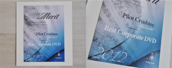 best corporate dvd 2012 award
